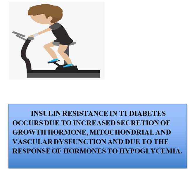 INSULIN RESISTANCE IN T1 DIABETES OCCURS DUE TO INCREASED SECRETION OF GROWTH HORMONE, MITOCHONDRIAL AND VASCULAR DYSFUNCTION AND DUE TO THE RESPONSE OF HORMONES TO HYPOGLYCEMIA.